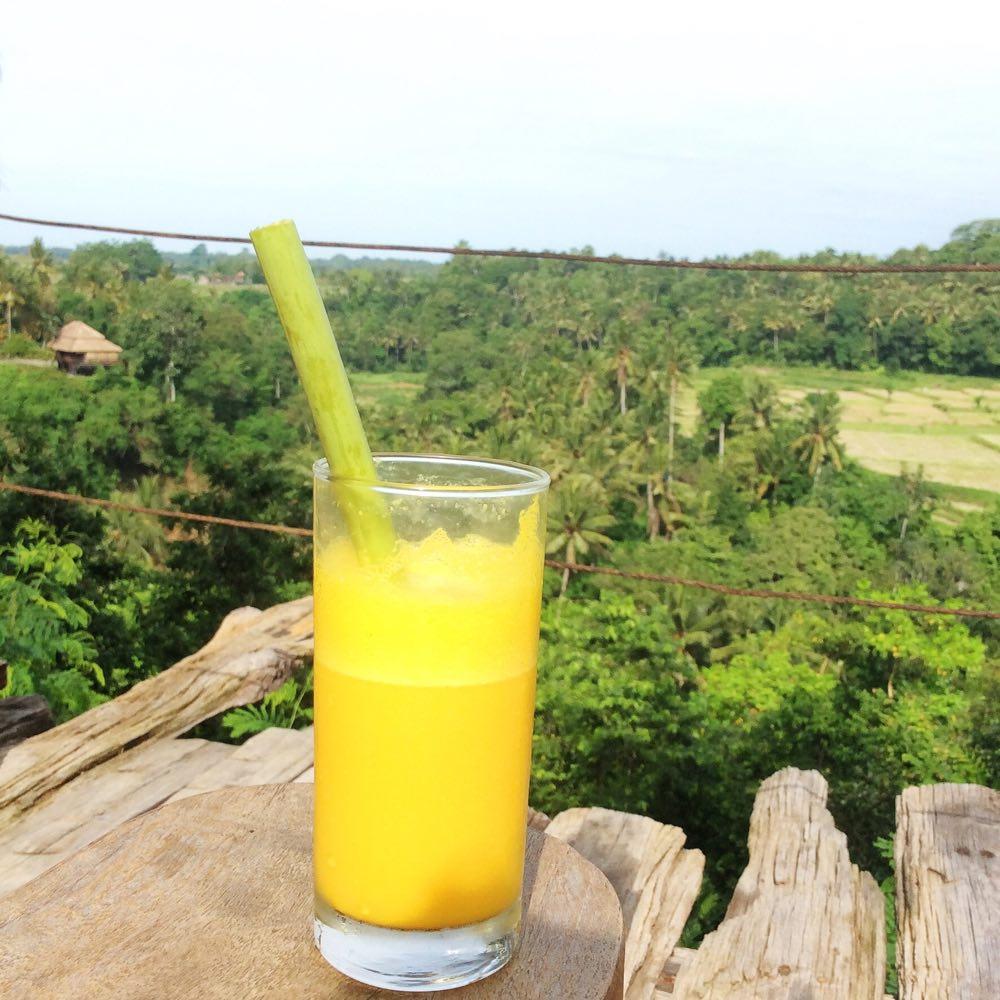 juice-1000px